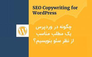 wordpress seo copywriting 2 320x200 - چگونه در وردپرس یک مطلب مناسب از نظر سئو بنویسیم؟